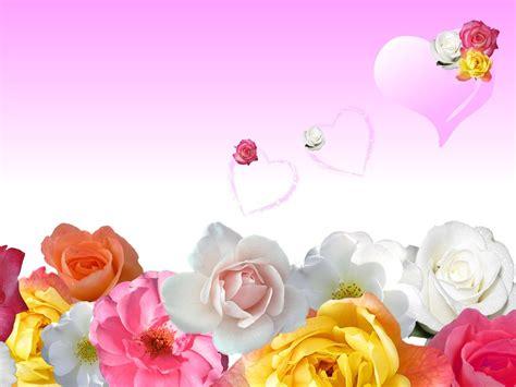 imagenes fondo de pantalla romanticas flores rom 226 nticas hd fundoswiki com