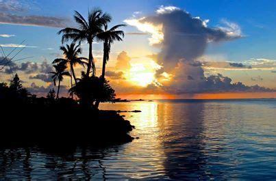 pine island boat tours tropic star of pine island inc