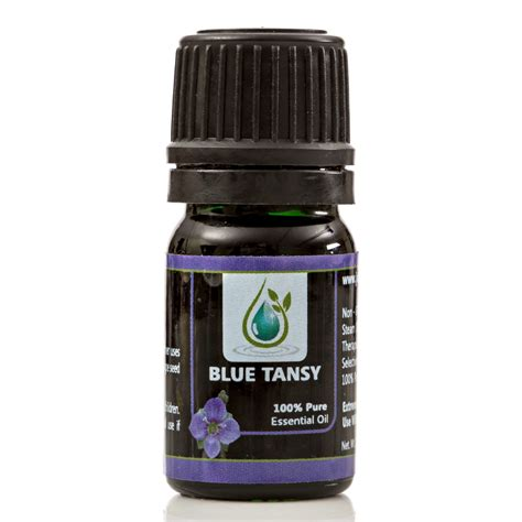 tansy blue essential 100 5ml blue tansy essential therapeutic grade 5ml 100