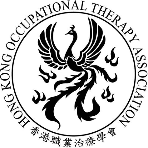 therapy organizations 2012 international occupational therapy conference page
