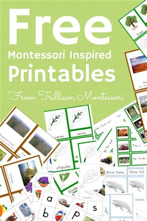 Montessori Printables Uk | 30 free montessori printables 3 part cards life cycles
