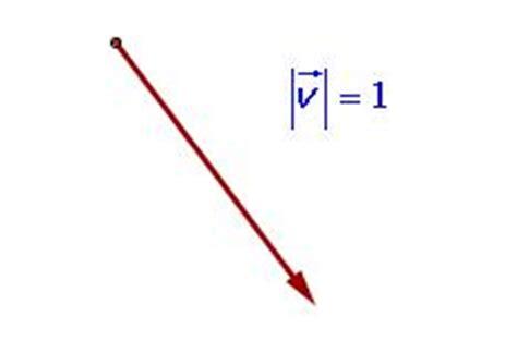 Imagenes De Vector Unitario | definici 243 n de vector unitario qu 233 es significado y concepto