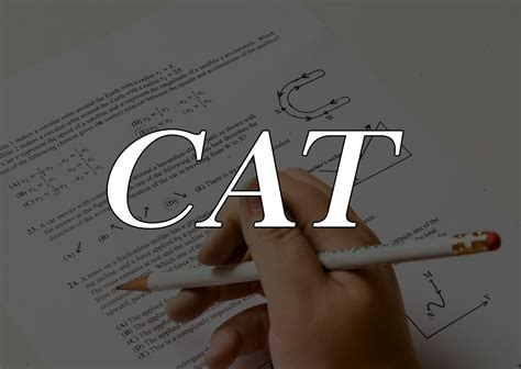 Cat Test For Mba by Cat Preparation Guidelines For The Aspirants Of Mba