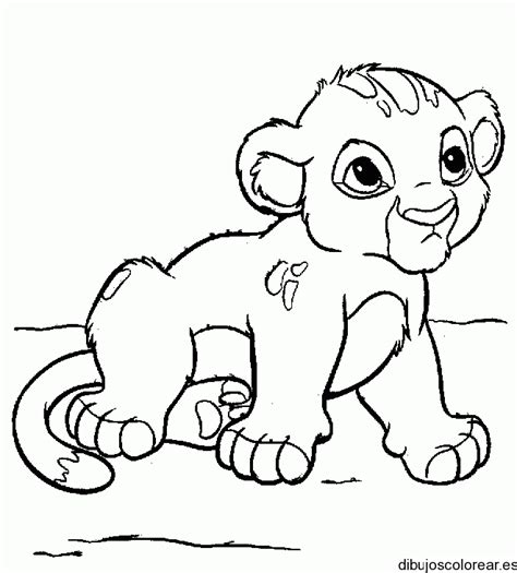 coloring pages of baby simba dibujo del peque 241 o simba