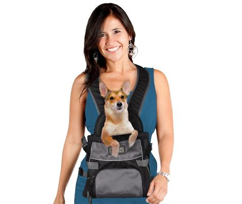 baby bjorn for dogs carrier backpacks must or fad australian lover