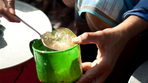 Would You Drink This Aloe Juice by Should You Be Sipping Aloe Vera Juice This Summer Abc News