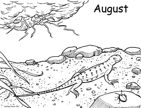 lizard coloring pages to print free coloring pages of desert lizard