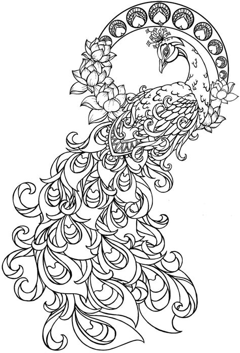 peacock coloring page peacock pinterest peacock