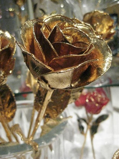 roses that last forever gold roses archives anns fine gifts houston texas