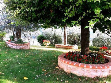 giardini con ulivi giardino foto di vento tra gli ulivi terni tripadvisor