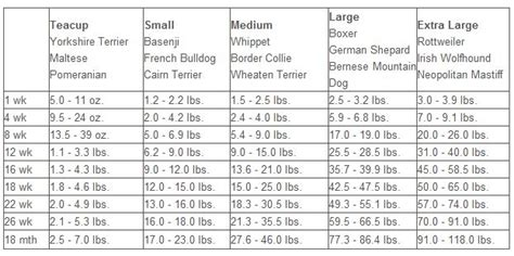 4 month lab puppy weight breed information puppy growth chart breed boxer