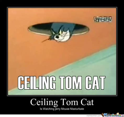 Ceiling Cat Meme - ceiling tom ceiling cat know your meme