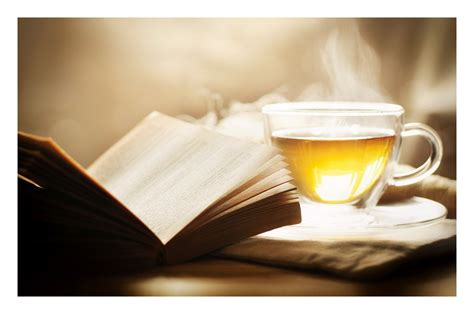 the book of tea books a book and a cup of tea by hyouro on deviantart