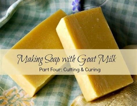 everyday items  cutting  curing soap