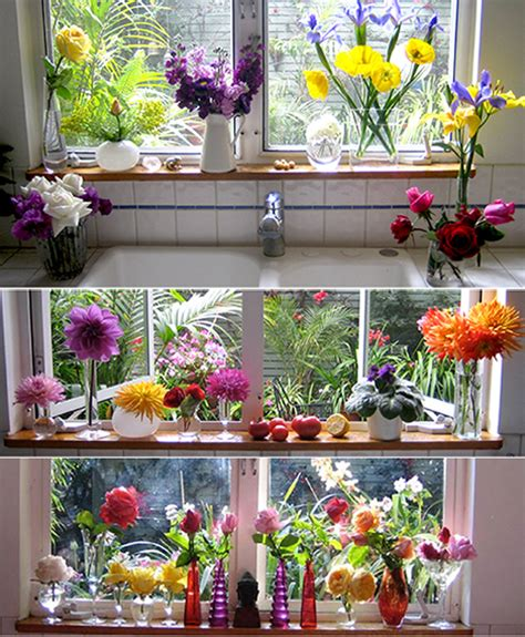 Flowers For Windowsill Windowsill Still Lives Mindfulness Practice In