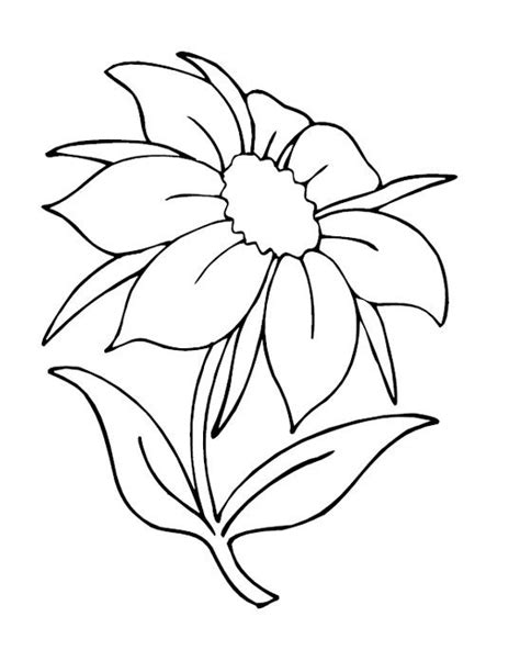 printable flowers in color flower page printable coloring sheets nature coloring