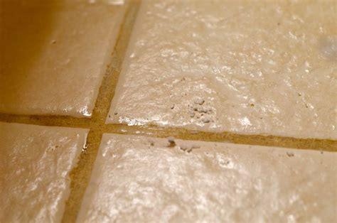 pulire le fughe dei pavimenti come effettuare la pulizia e la manutenzione delle fughe