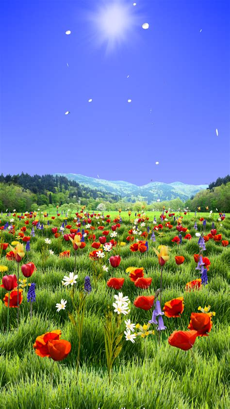 google wallpaper spring spring scene live wallpaper android apps on google play