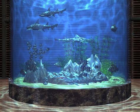 wallpaper aquarium background 25 aquarium backgrounds wallpapers freecreatives
