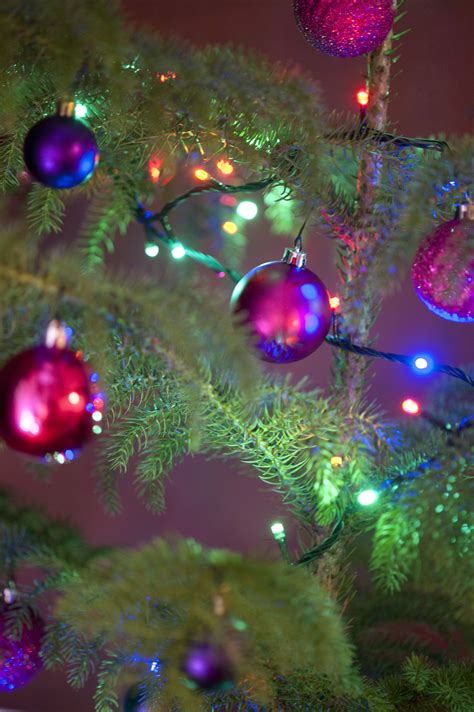 free stock photo 11577 colorful christmas tree decorations