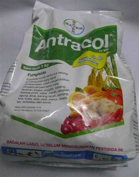 Fungisida Antracol antracol 70 wp 1 kg obat tanaman