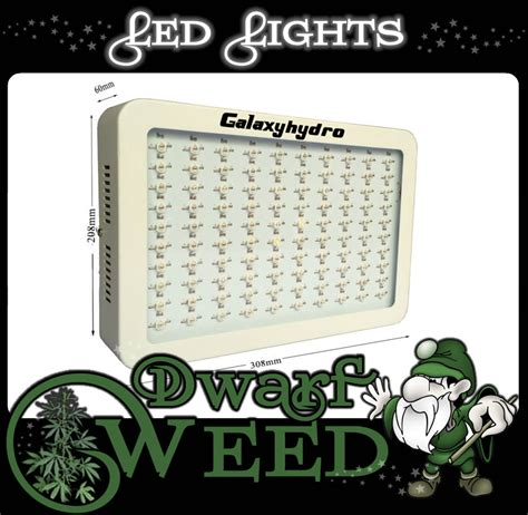 good lights for growing weed led lights for growing weed weed dwarf cannabis growing