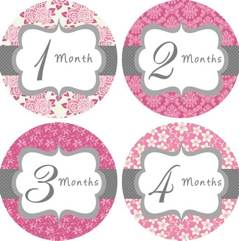 printable month stickers for babies baby month stickers baby girl monthly onesie stickers hot pink
