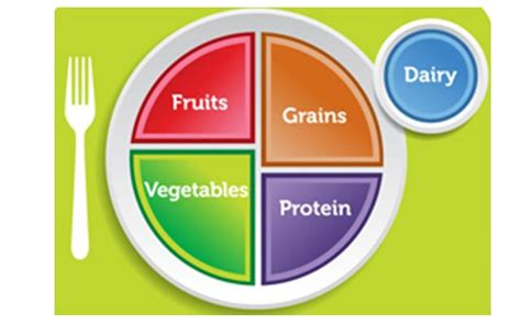 myplate analysis 316 multicultural web page assignment
