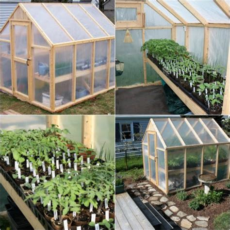 how to make a green house how to build a simple greenhouse in your backyard