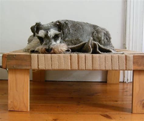 diy raised dog bed simple and stylish diy pet beds