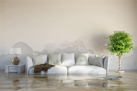 humedad en casa soluciones soluciones a los problemas de humedad en casa 183 vivienda