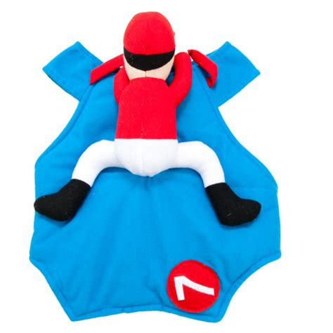 petsmart costumes petsmart costumes toys 2013 review emily reviews