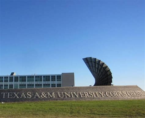 Tamucc Mba Acceptance Rate by A M Corpus Christi Admissions Sat Admit Rate