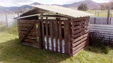 dog house made from wooden pallets how to build a pallet dog house diy