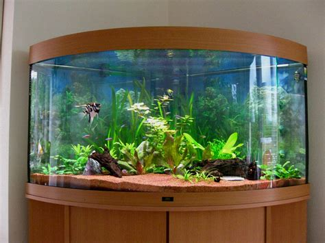 Aquarium Design Pic | exclusive aquarium design