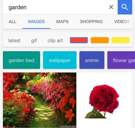 mobile image search mobile image search adds new filters
