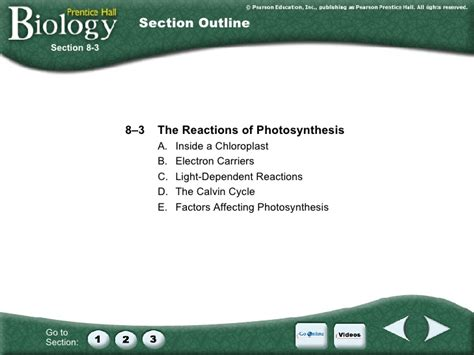 section 8 3 the reaction of photosynthesis ch 8 photosynthesis