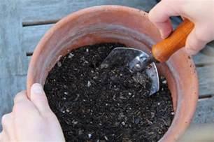 Aquaponics Vertical Garden - should you sterilize potting soil garden culture magazine