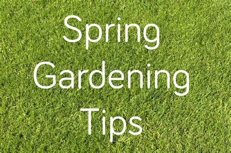 garden tips spring gardening tips livinghouse blog