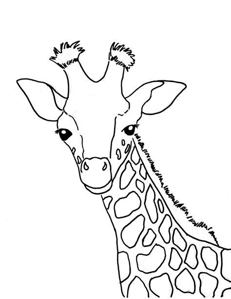 giraffe face coloring pages giraffe face coloring page giraffe coloring pages max