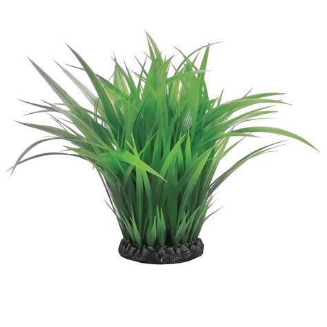 easy plants biorb easy plant aquatic grass ring small