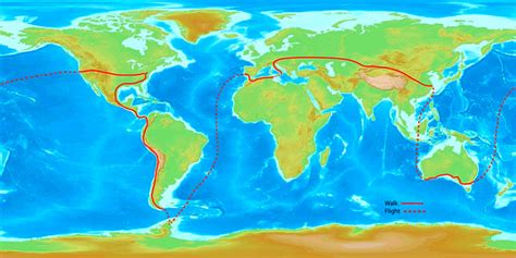 map of the world newman could you walk around the world orthodontics