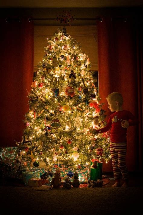 29 best images about christmas eve on pinterest trees