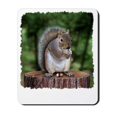 squirrel nuts w mousepad by admin cp35656381