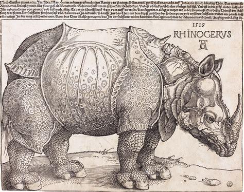 d 252 rer s rhinoceros wikipedia