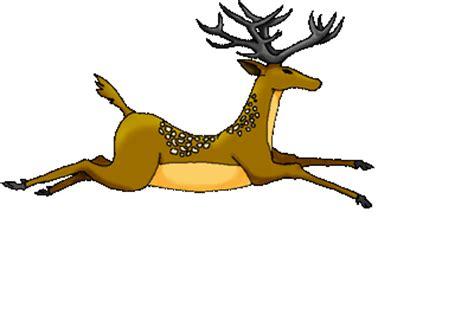 wallpaper binatang gerak gambar animasi binatang bergerak lucu
