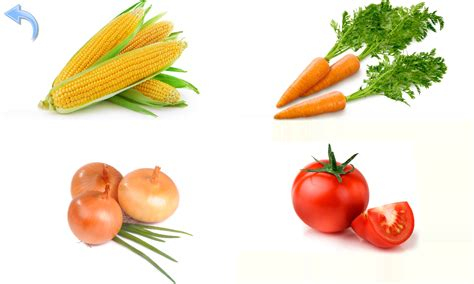google images vegetables enjoyable pictures of fruits and vegetables for children