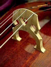 Handmade Cello For Sale - picture of cello new handmade cello for sale