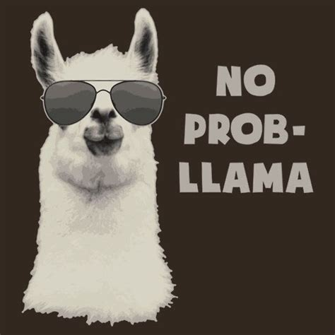 25  best ideas about Llama puns on Pinterest   Nerd humor, Grammar humor and English puns