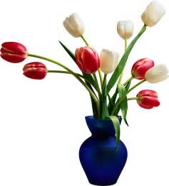 render vase tulipes nature autres inconnu png image